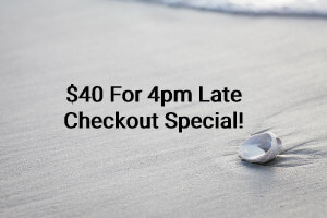 "Sea shell on beach of undisturbed sand, with text reading ""$40 for 4pm Late Checkout Special""."