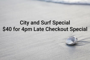 "Sea shell on beach of undisturbed sand, with text reading ""City and Surf Special: $40 for 4pm Late checkout special""."